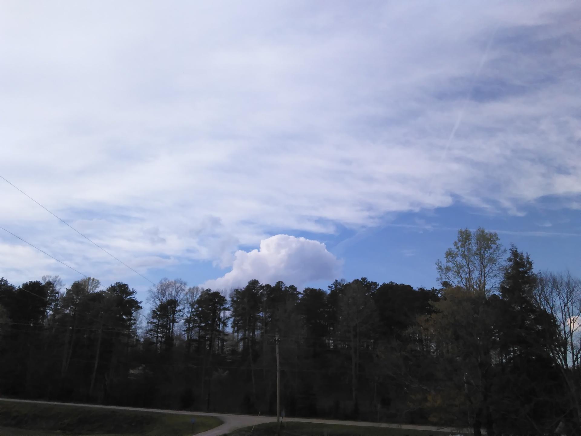 Lazy cloud over forest | codenamesailorearth, environment, landscape, nature