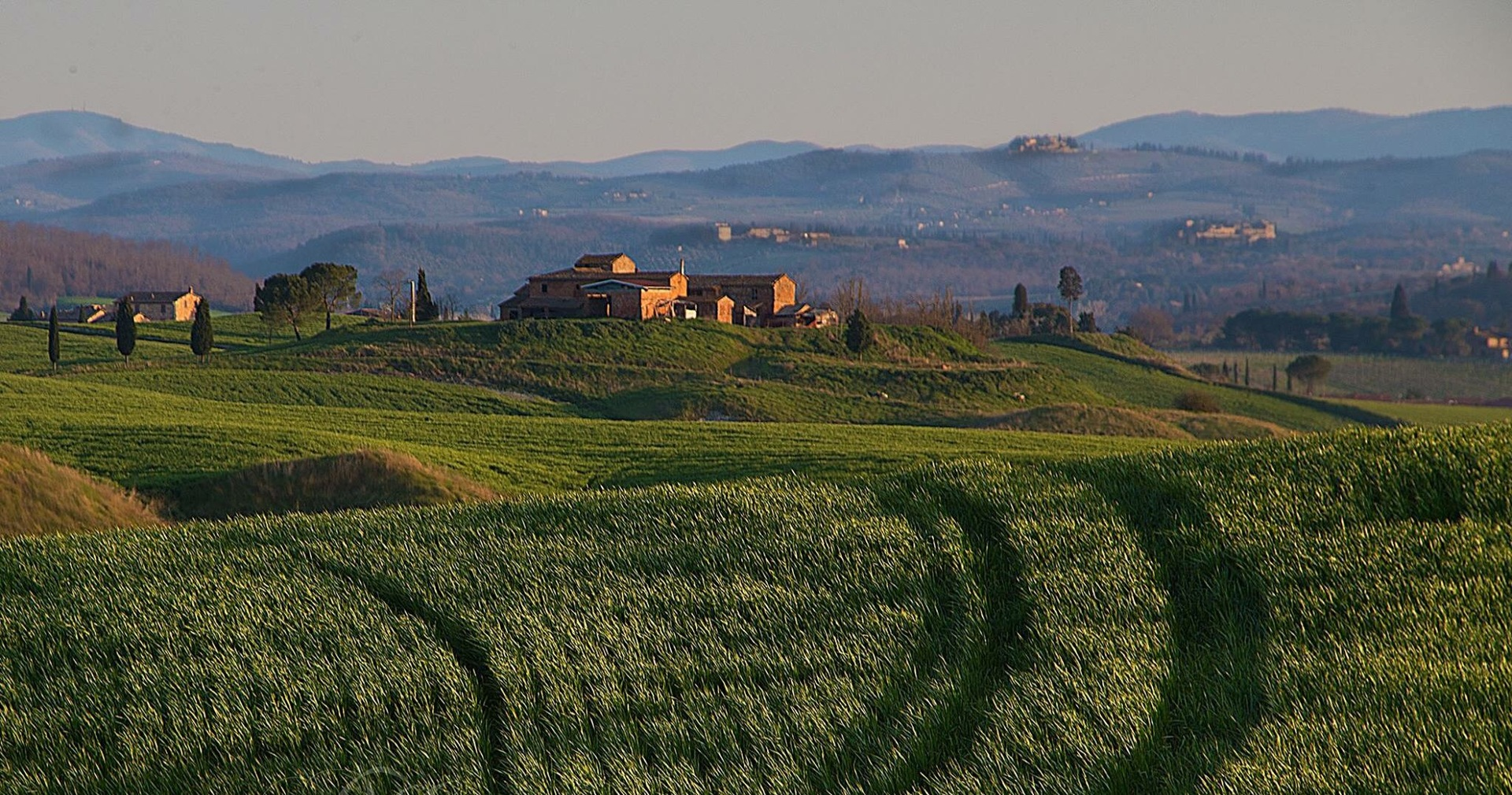 Tuscan countryside  | phogwood, farm, field, hill