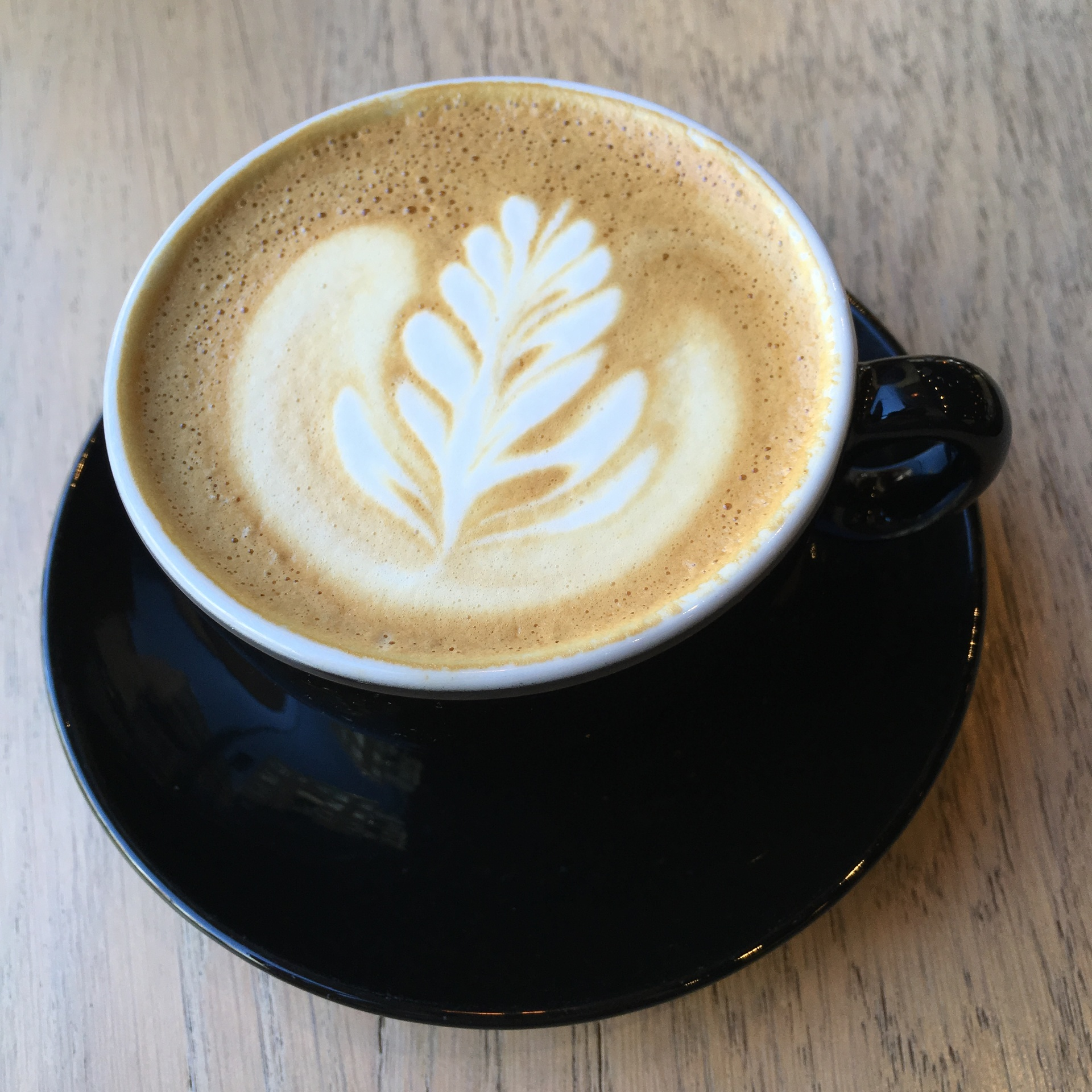 Flat White Coffee  | alonbj, beverage, cafe, cappuccino