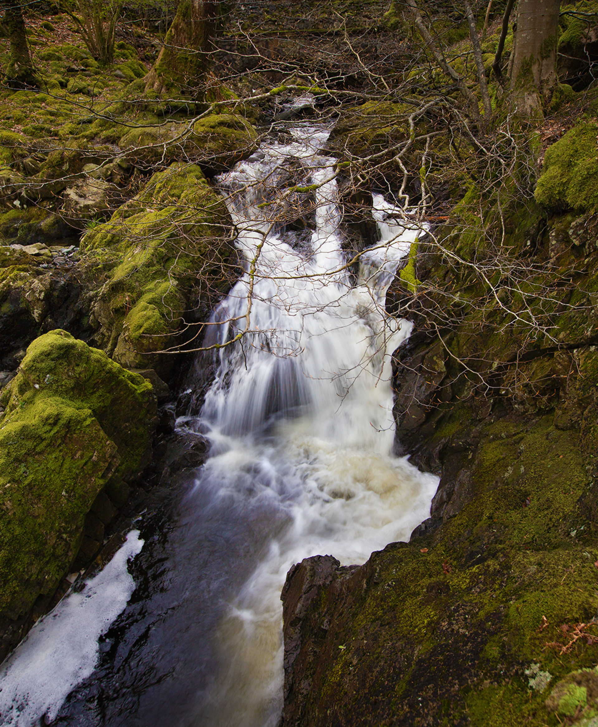 Mountain stream. Stream flowing down to lake Thirlmere