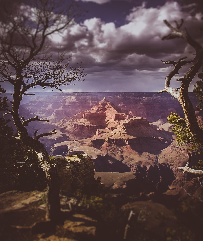 Grand Canyon | shawnswan, art, dawn, desert