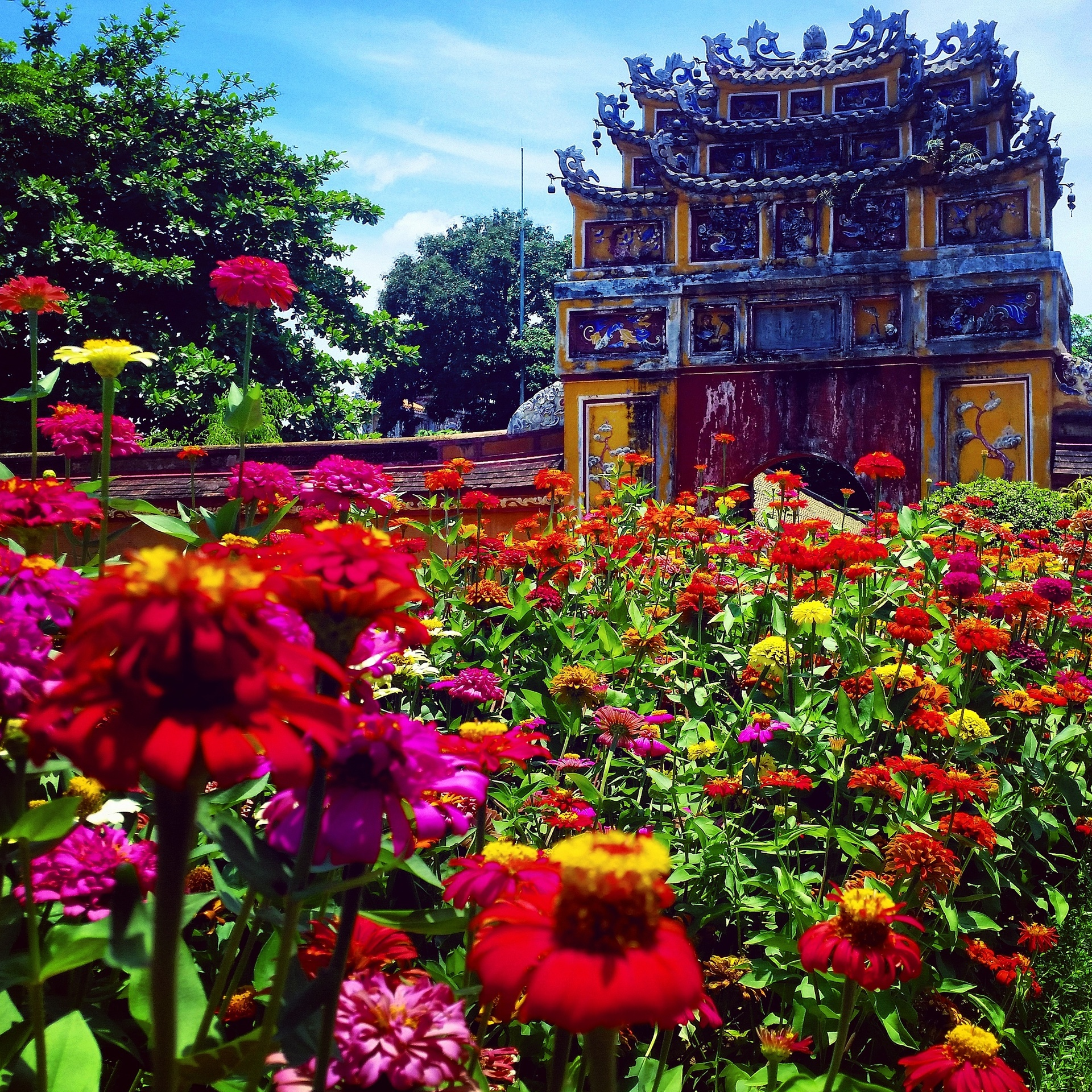 Beauty within ruin   carajayne, flowers, temple, ancient