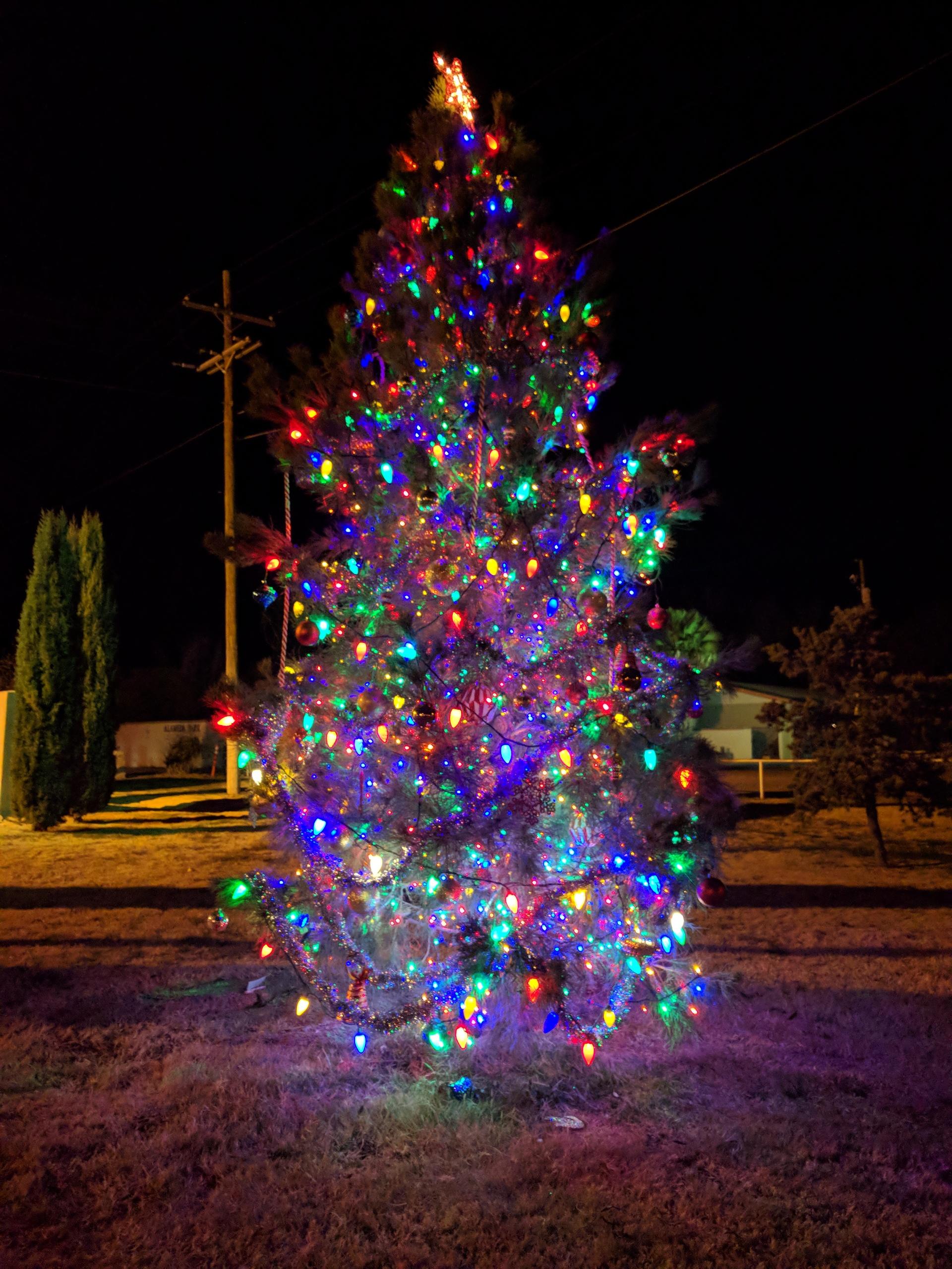 Xmas time | marichan66, Christmas, tree, lights