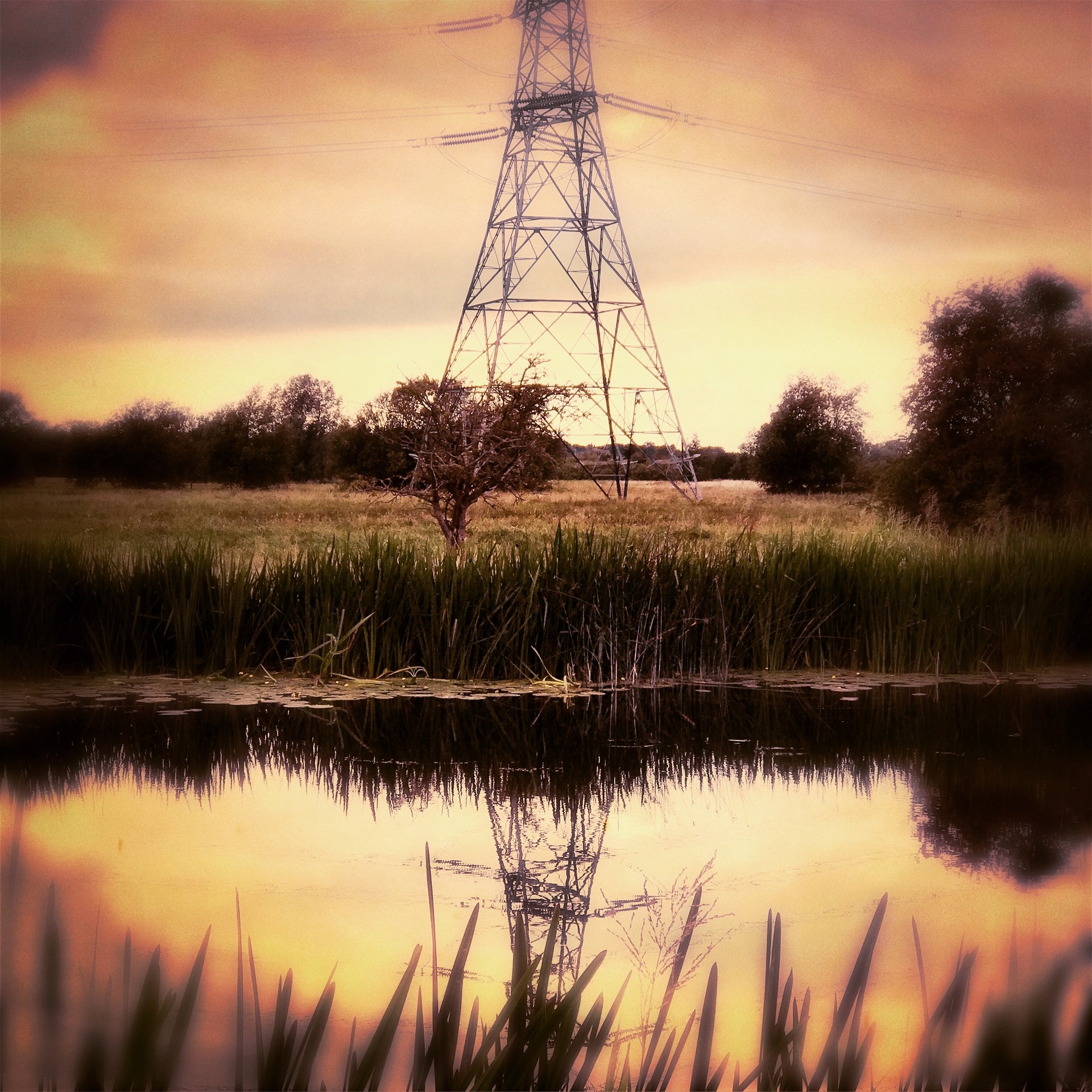 Electric pylon  | mezmic, sunset, dawn, energy