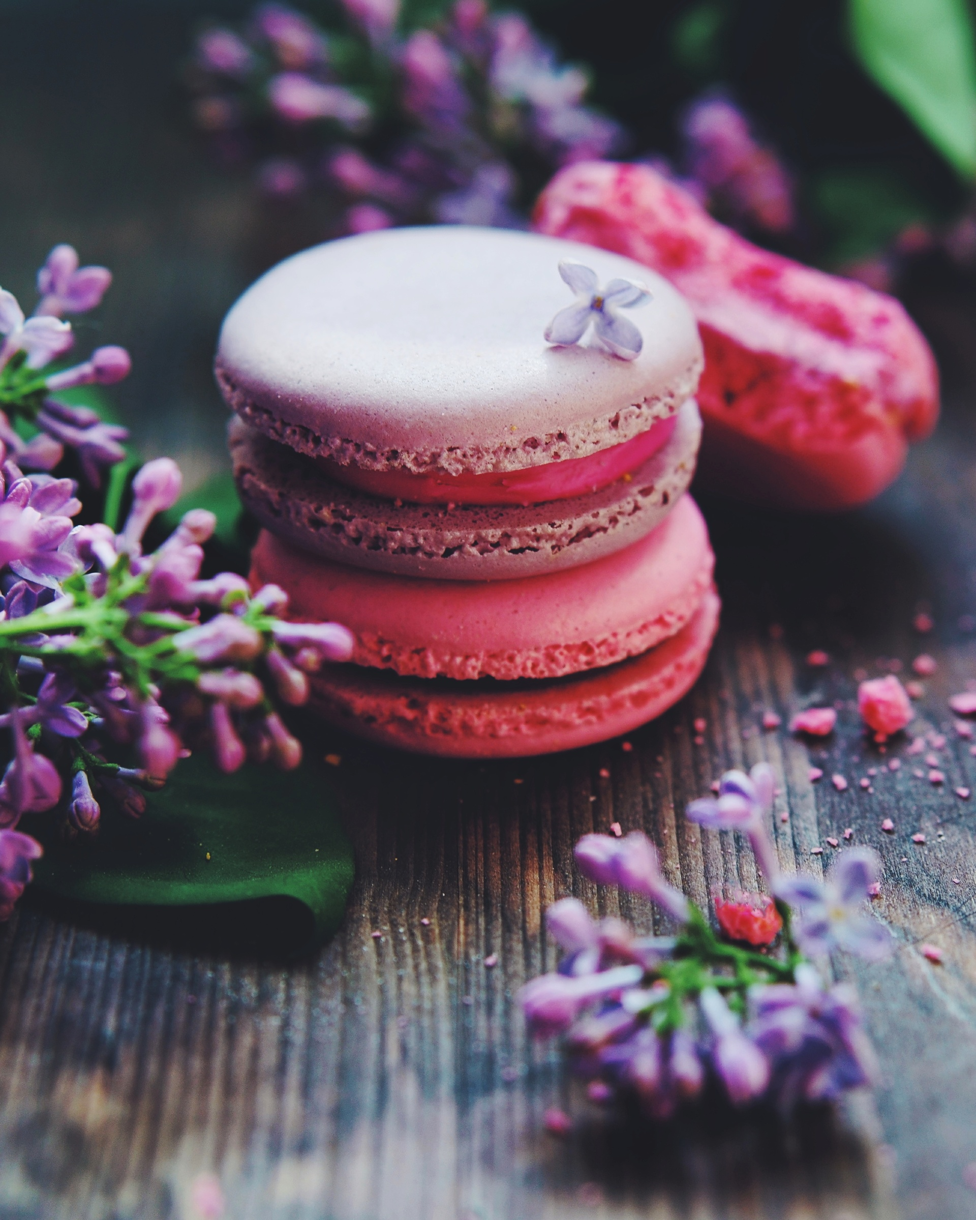 Close-up of a macaroons   indoors, table, violet, photography