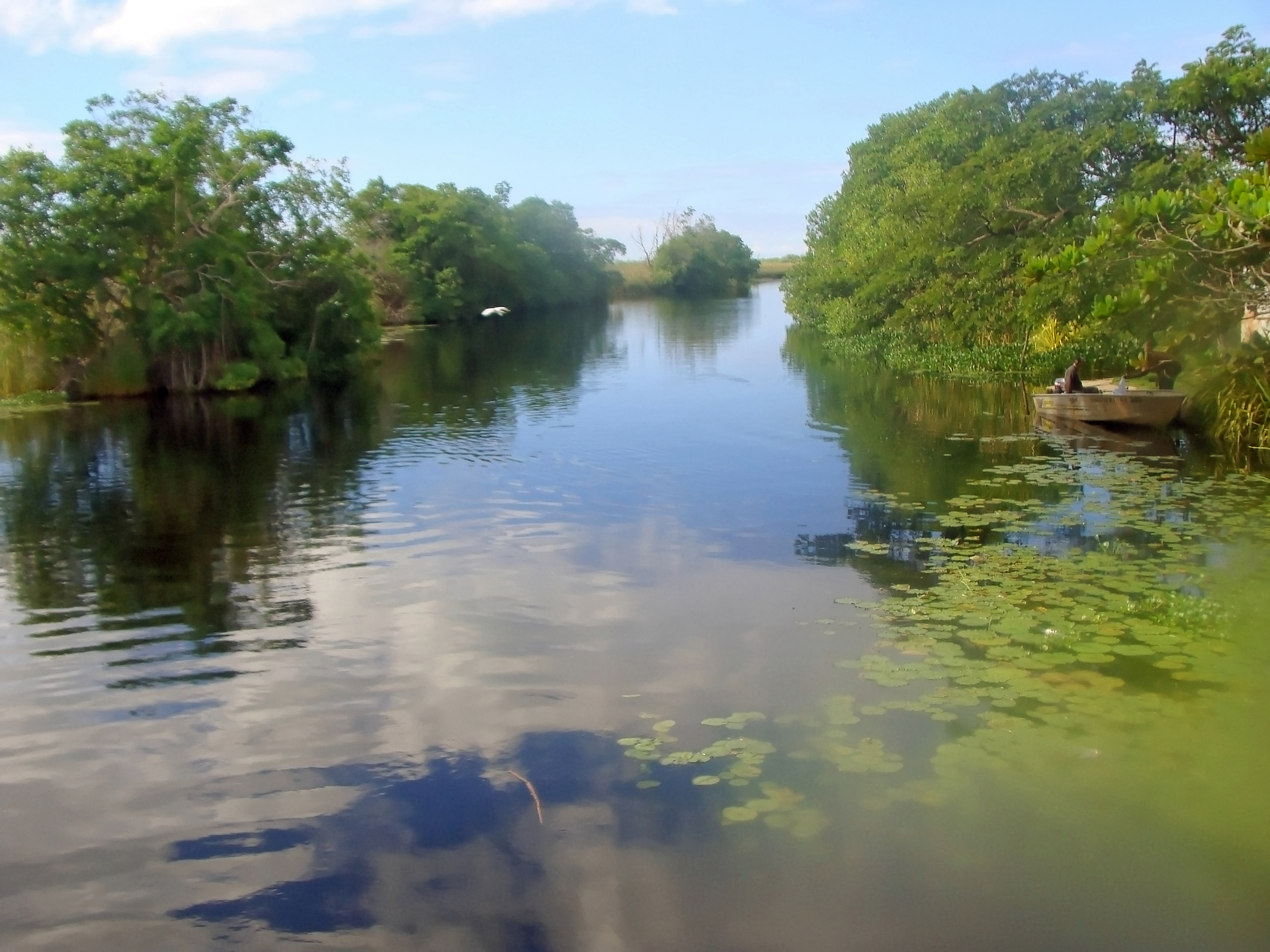 The Black River | jacquelin, water, river, reflection