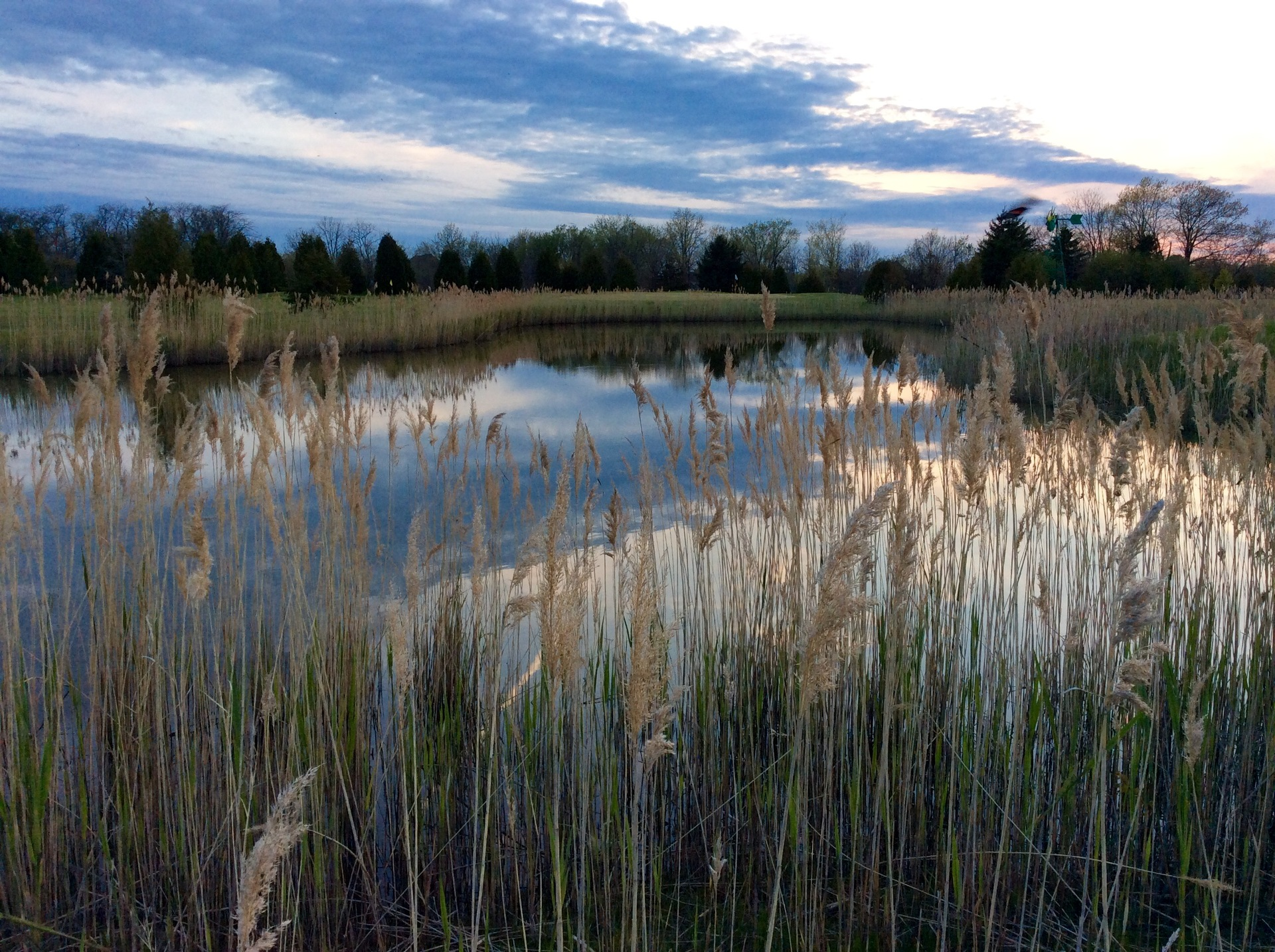 Blue Sky | drazpet, grass, lake, landscape
