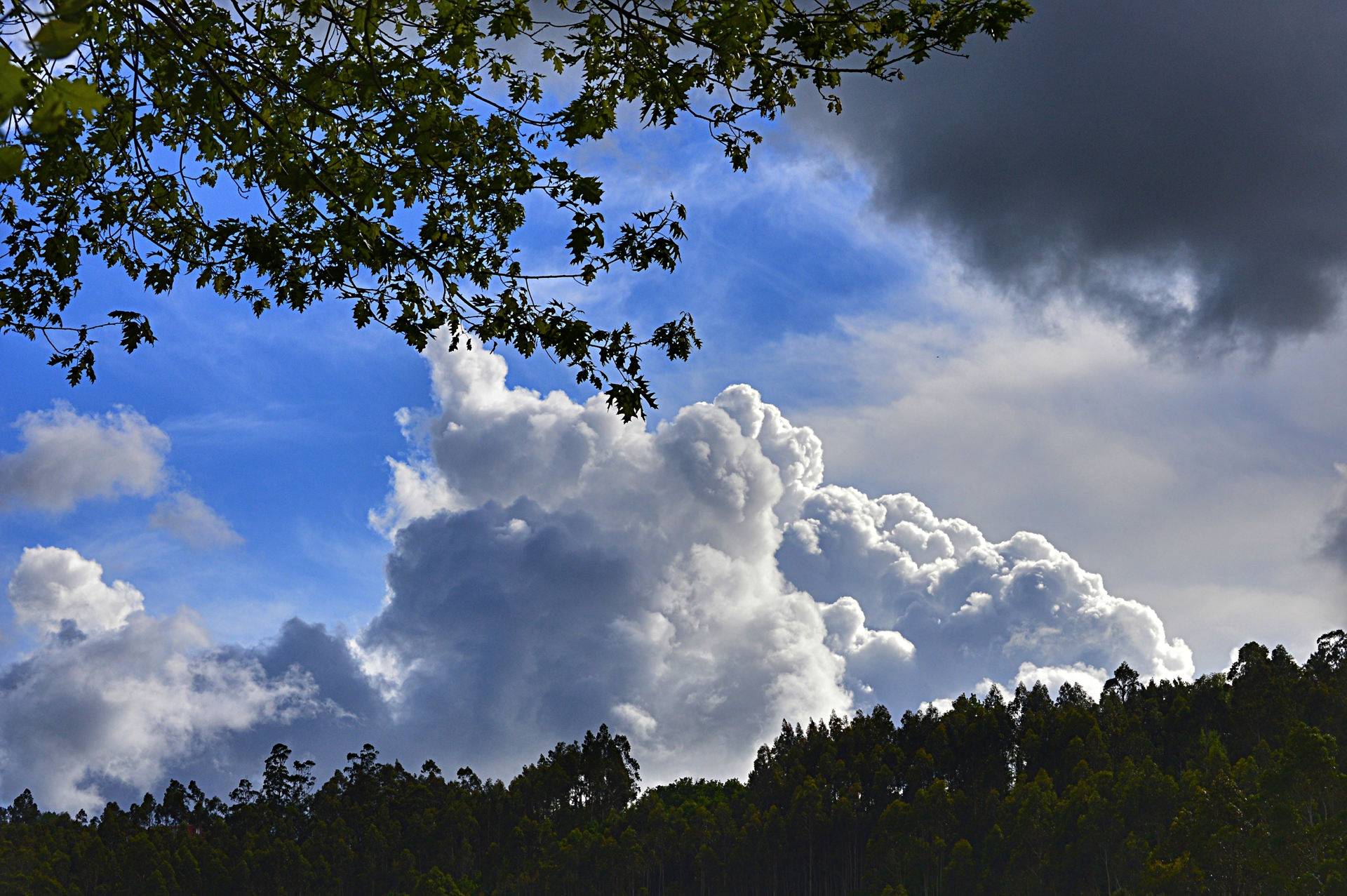 Storm on the way | manusfer, cloud, countryside, nobody