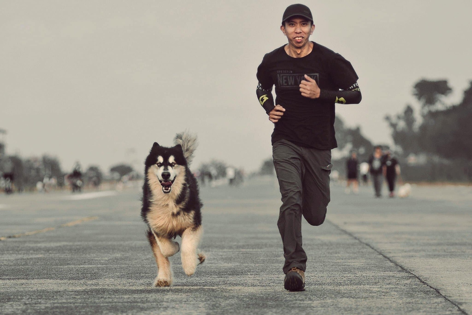 Unique Bond with Pets example photo