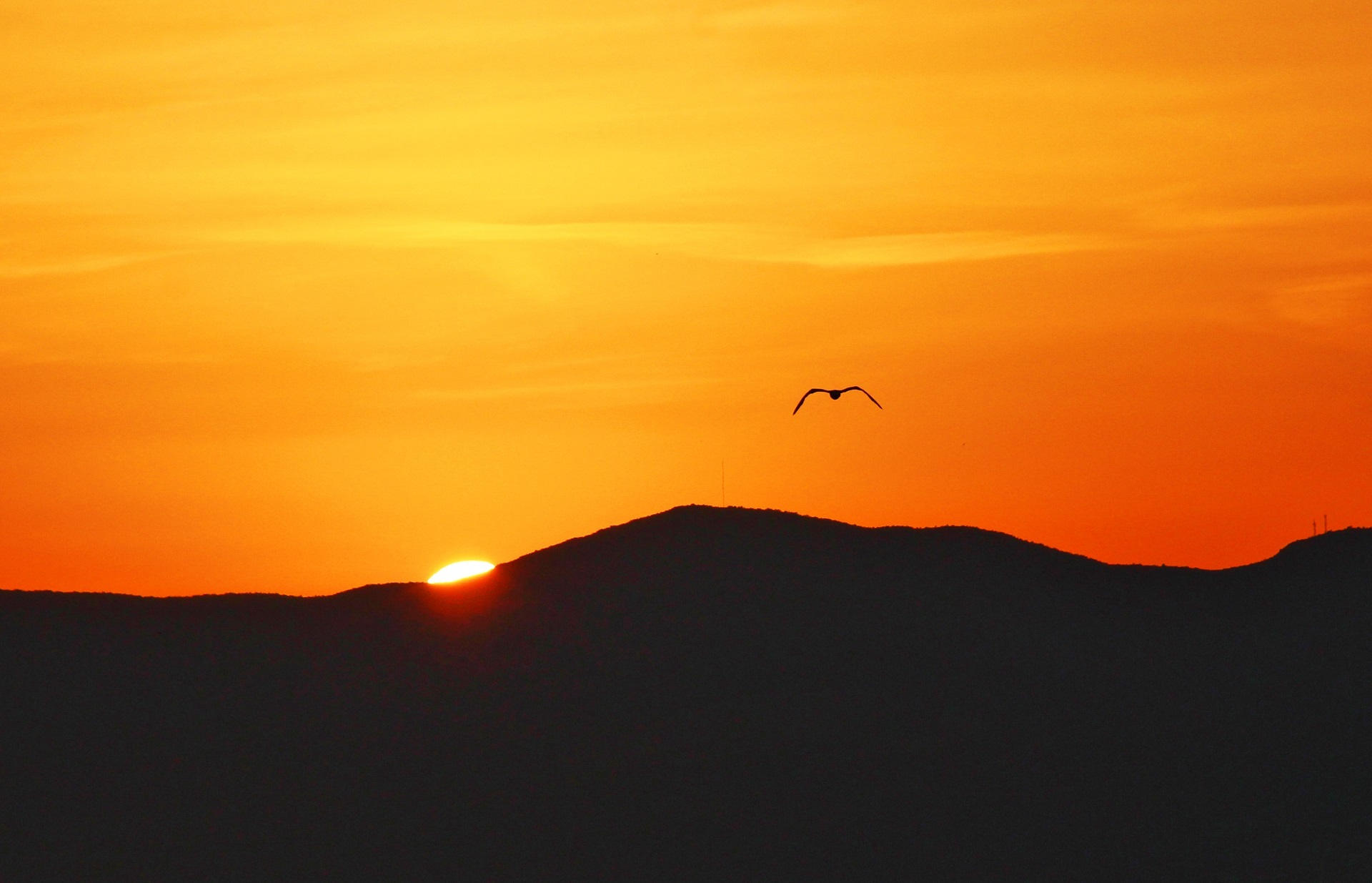 Sunrises and sunsets of our planet example photo